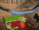 Vợ thương binh 91 tuổi sống cô độc trong căn chòi rách