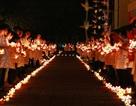 Sinh viên Y Dược Huế làm lễ tri ân những người hiến xác