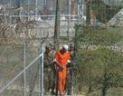 CIA có thể đã giết tù nhân, dàn dựng thành vụ tự tử