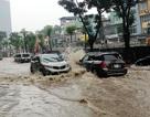 Kinh nghiệm lái xe đường ngập lụt