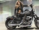 Động cơ V-Twin - Niềm tự hào của Harley-Davidson