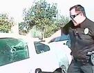 Xem cảnh sát Melbourne truy bắt nghi phạm trên phố