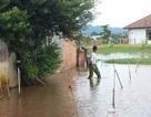 Hồ thủy lợi tích nước, hàng chục hộ dân bị ngập sâu trong nước