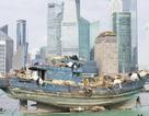 Triển lãm với con thuyền chở muông thú đi khắp Thượng Hải