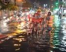 Triều cường đạt đỉnh, dân Sài Gòn bì bõm trong dòng nước đen ngòm