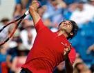 Federer tranh cúp vô địch với Djokovic