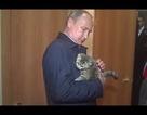 Tổng thống Putin cưng nựng mèo sống sót trong cháy rừng