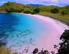 Chiêm ngưỡng những bãi biển màu hồng đẹp mê đắm lòng người
