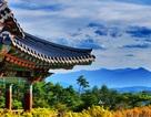 Trở lại Hàn Quốc – nhiều ưu đãi hấp dẫn dành cho du khách