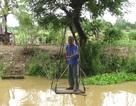 """10 năm nông dân liều mình đi thăm ruộng bằng """"cáp treo"""""""