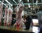 16% mẫu thịt có chất tăng trọng