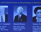 Người thử thuốc rụng hết răng nhận Nobel Y học