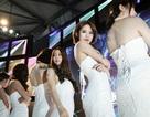Dàn show girl mỹ nhân thu hút hàng ngàn game thủ