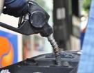 Kỳ vọng giá xăng dầu còn giảm tiếp trong tháng 8