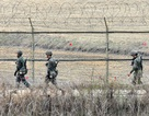 Nổ mìn tại khu phi quân sự liên Triều, 2 binh sĩ Hàn Quốc bị thương nặng