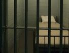 Cố tình mang thai 14 lần trong 10 năm... vẫn không thoát tù giam