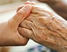 Có thể hưởng bảo hiểm thất nghiệp và trợ cấp BHXH một lần khi về hưu?