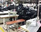 Dùng kéo cắt vải đâm chết đồng nghiệp tại công ty may