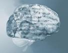 9 yếu tố nguy cơ phổ biến nhất gây bệnh Alzheimer