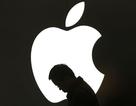 Apple đang lụi bại?