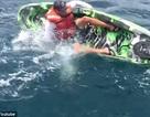 Cá mập hung dữ tấn công vận động viên chèo thuyền