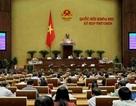 Thủ tướng chỉ định chủ đầu tư dự án sân bay Long Thành
