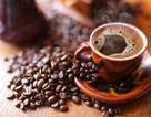 Nếu thích cafe hãy lên Buôn Ma