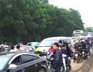 Hàng ngàn người đổ về cánh đồng hoa hướng dương, đường tắc nghẽn