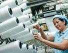 Tăng lương tối thiểu vùng năm 2016: Hiệp hội dệt may đề xuất mức 6 %