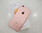iPhone 6S, 6S Plus màu vàng hồng bất ngờ xuất hiện tại Việt Nam