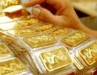 Giá vàng thế giới tăng mạnh, trong nước nhích nhẹ