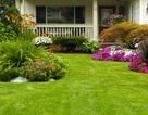 """7 """"bí quyết"""" để thiết kế khu vườn nhỏ tuyệt đẹp"""