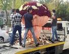 Trai trẻ si tình chi gần 80 triệu đồng mua hoa tặng bạn gái