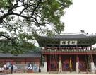 Du lịch Hàn Quốc vào mùa hè: Một số điểm cần lưu ý