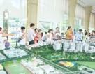 """Block C khu Ruby – Celadon City """"hút"""" khách"""