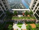 Five Star Garden – chuẩn mực mới cho cuộc sống xanh