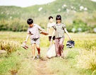Chiếu miễn phí 20 phim truyện Việt Nam tranh giải Bông Sen Vàng