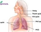Vì sao chữa viêm họng mãi không khỏi ?
