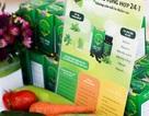 Tìm kiếm giải pháp rau xanh mới cho người tiêu dùng