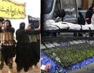 IS phòng thủ trên chiến trường, tăng cường khủng bố phương Tây