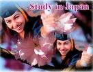 Phỏng vấn tuyển sinh du học Nhật Bản tháng 4/2016