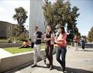 Tìm hiểu các ngành học có cơ hội việc làm và định cư cao tại Úc