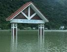 Hải Phòng: Cả xã bị nhấn chìm trong biển nước