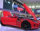 Các doanh nghiệp chi 2,31 tỷ USD nhập khẩu ô tô trong 10 tháng