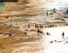 Điện Biên: Mưa lũ bất ngờ, 2 người chết
