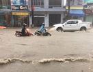 """""""Đồi nhân tạo"""" gây ra cảnh ngập lụt ở Quảng Ninh?"""