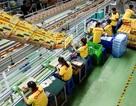 Năm 2016, TP.HCM cần khoảng 270.000 lao động