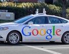 Ford bắt tay hợp tác với Google làm xe tự lái