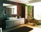 Những thiết kế đẹp cho phòng tắm