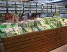 Rau bẩn vào siêu thị: Tin nhau là chính chứ khó kiểm tra!